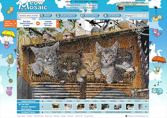 cat photo mosaic